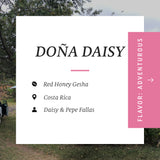 Doña Daisy, Red Honey Gesha, Costa Rica