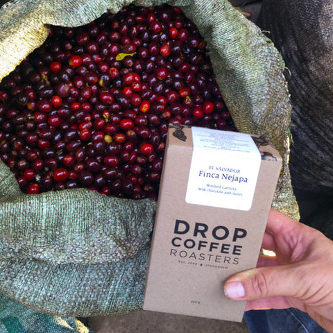 Finca Nejapa  - Washed Red Caturra, El Salvador