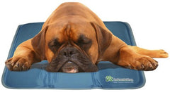 Cool Pet Pad by Green Pet Shop