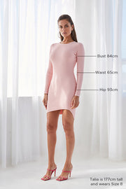 Double Rib Long Sleeve Mini Dress