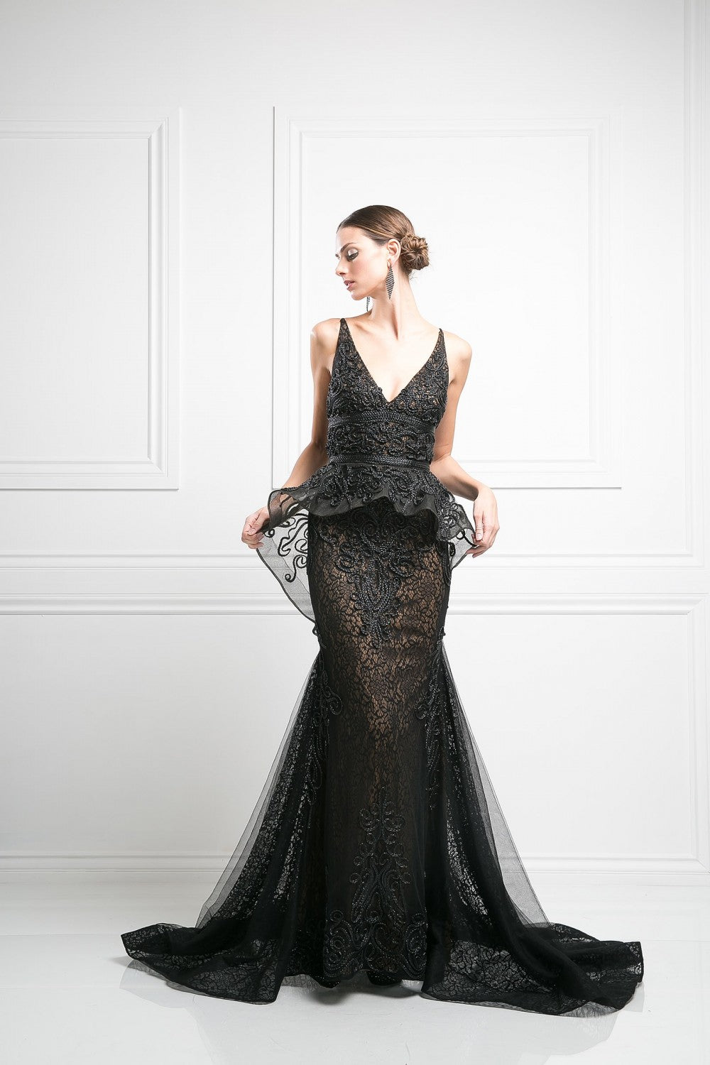 Lace Embroidered Novelty Gown