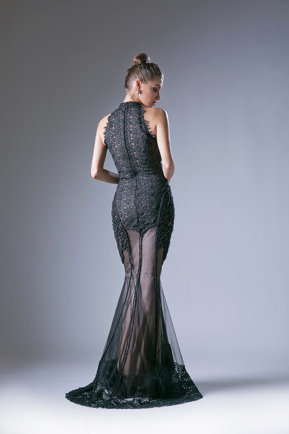 Lace Novelty Mermaid Gown