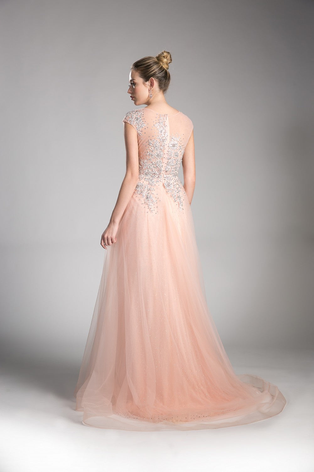A-Line Tulle Dress With Beaded Cap Sleeve Bodice And Illusion Back