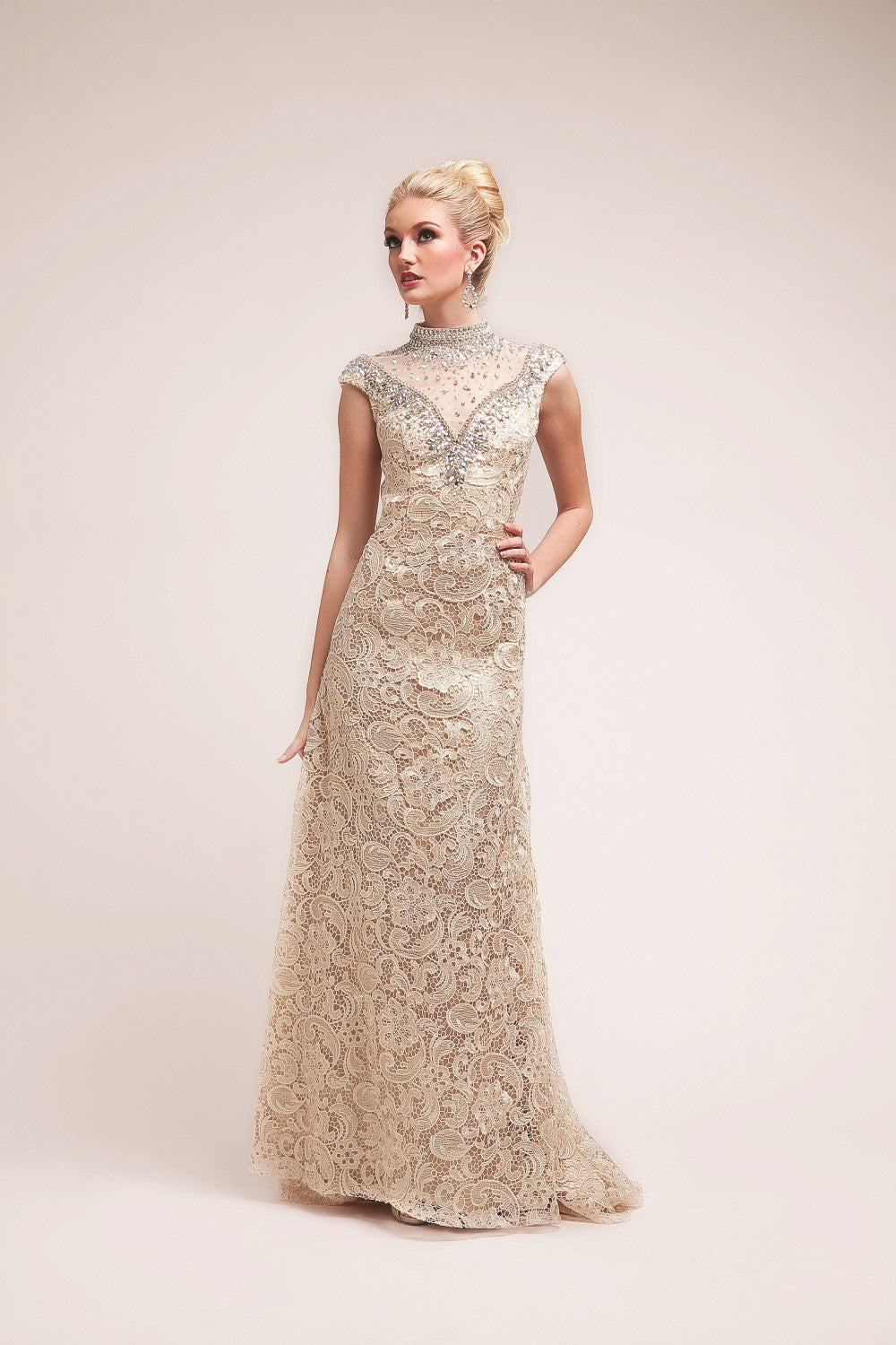 Beaded Lace Sheath Gown