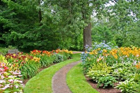 Strictly Daylilies