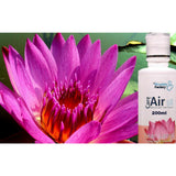 Thai Lotus Aromatherapeutic Essence (200ml) - CareforAir UK