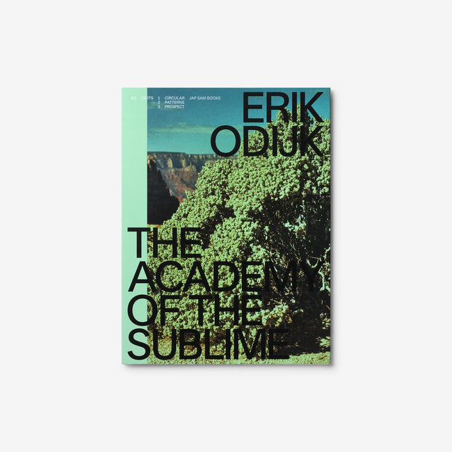 Erik Odijk. The Academy of the Sublime