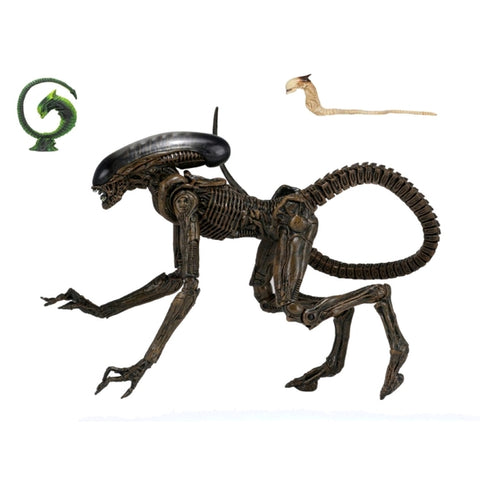 "Alien - Dog Alien Ultimate 7"" Action Figure"