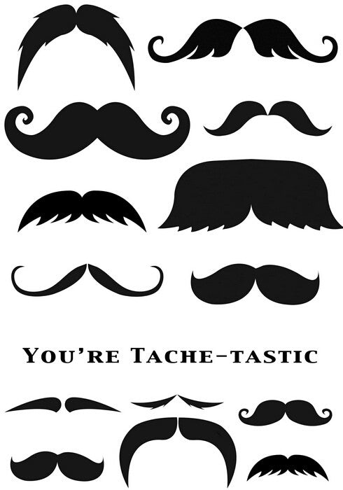 Marion Emberson Designs - Tache - Tastic - sugar and spice crafts