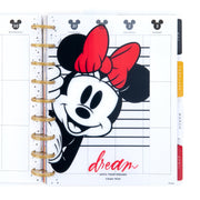 Mickey and Minnie Classic Dashboards - Dreams Come True