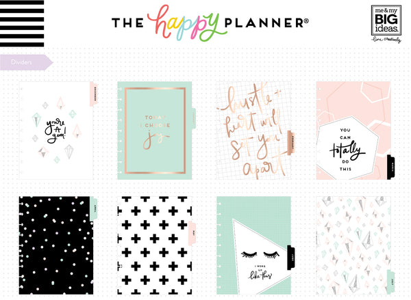 DELUXE 2018 - 2019 Classic Happy Planner® - You Got This - Student