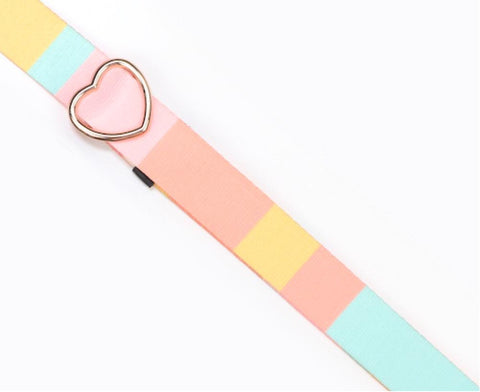 Color Blocked Planner Purse Strap