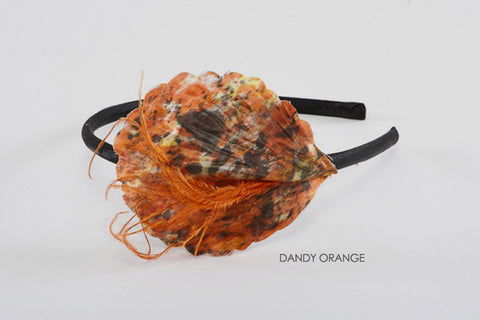Dandy Orange