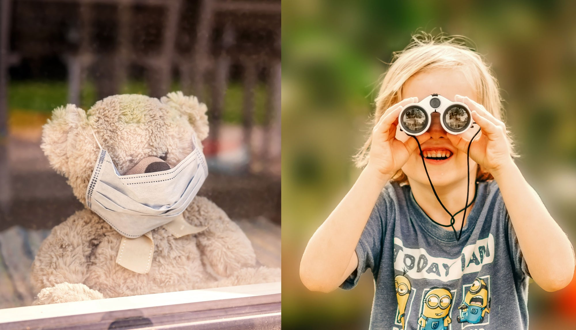 teddy bear in window, child with binoculars, teddy bear hunt