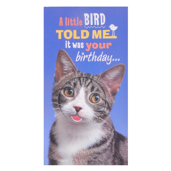 Your Birthday Greeting Card