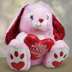 Some Bunny Loves You Soft Toy