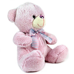 Adorable Pink Teddy Bear - 32 cm