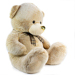 Lovely Brown Teddy Bear - 60 cm