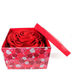 Forever Mine Rose Cushion (Red)