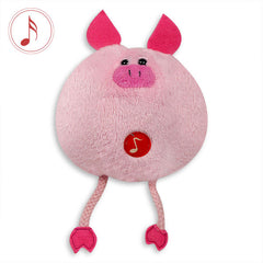 Buy Musical soft toys, teddy bear gift