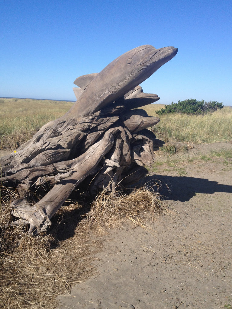 dolphin driftwood sculpture on way to long beach, wa on the discovery trail