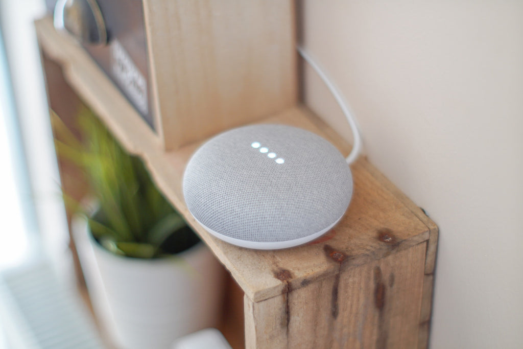 Google Home Mini Assistant