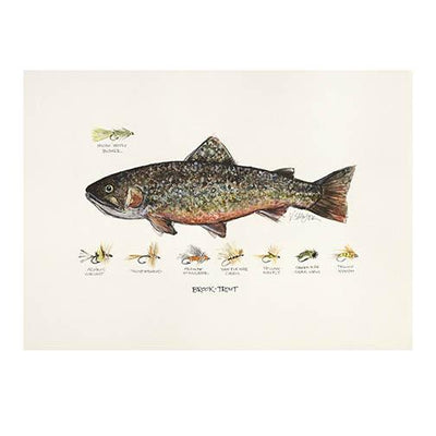 Vaughan Spanjier's Fish of Pursell Farms Trout Note Cards-HOME/GIFTWARE-Brook Trout-Kevin's Fine Outdoor Gear & Apparel