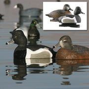 Avery Life-Size Ring-Necked Duck Decoys