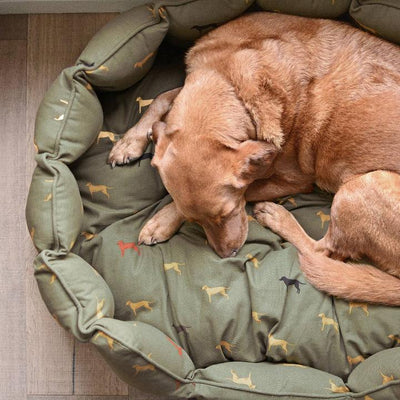 Fab Labs Pet Bed-PET SUPPLY-Kevin's Fine Outdoor Gear & Apparel