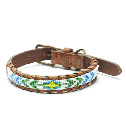 Camp Hero Flower Dog Collar-PET SUPPLY-Kevin's Fine Outdoor Gear & Apparel