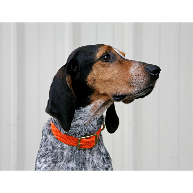 Mendota Double Braid Collar-PET SUPPLY-Mendota Products Inc.-Kevin's Fine Outdoor Gear & Apparel