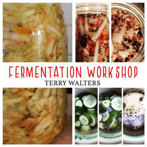 5/27 Fermentation Workshop with Terry Walters