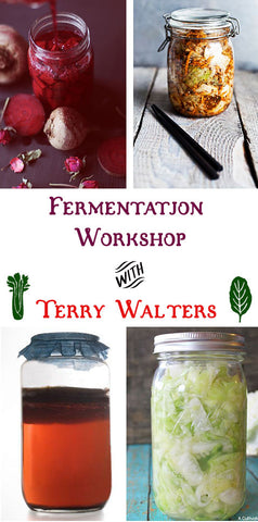 7/17 Fermentation Workshop with Terry Walters