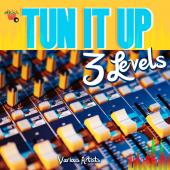 TUN IT UP 3 LEVELS - Various Artists - [Album]