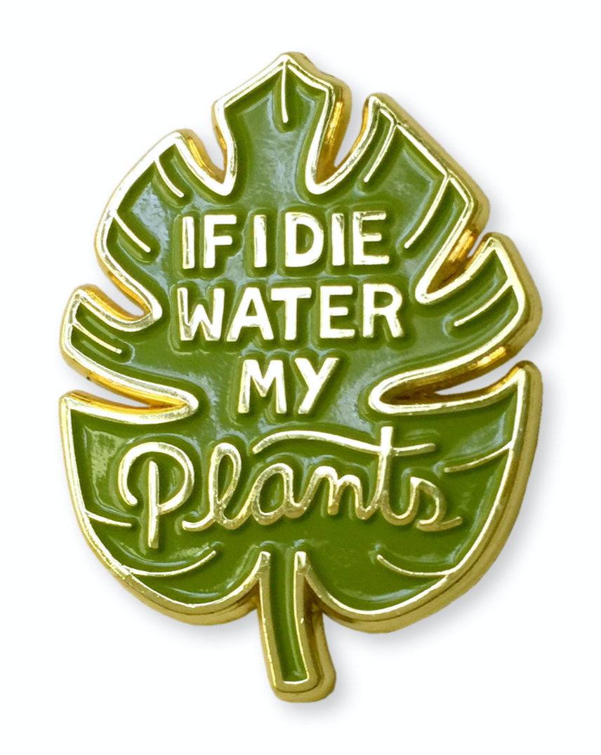 Enamel Pin - Water My Plants