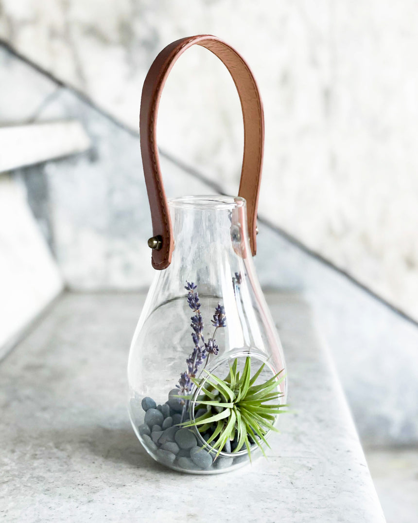 Leather Air Plant Terrarium