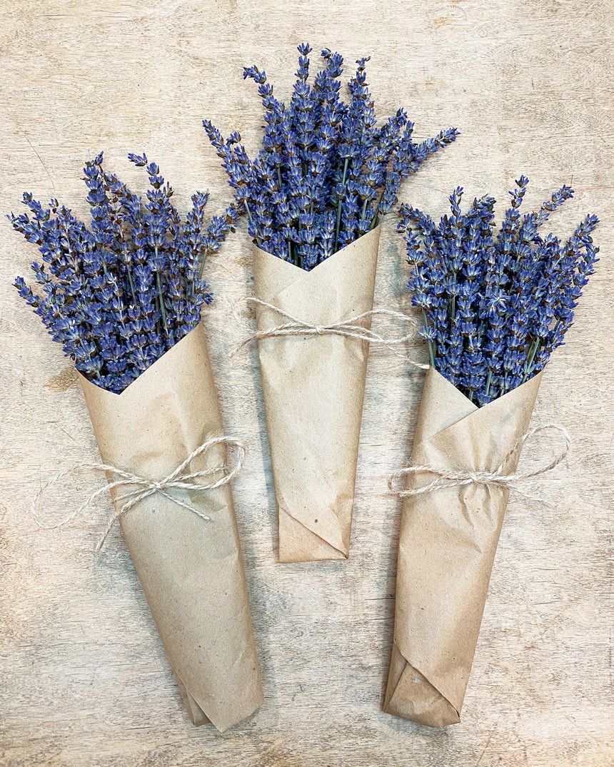 Local Dried Lavender Bundle