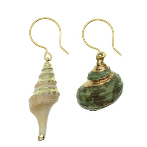 Shell Earrings - Shopidpearl