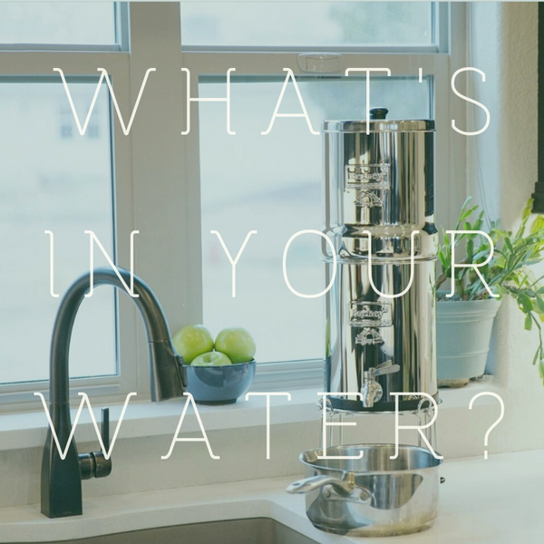 What's In Your Water?