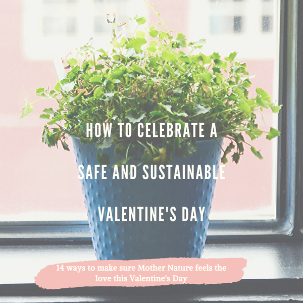 Celebrate A Safe and Sustainable Valentine's Day!