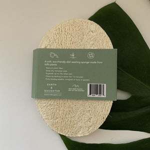 Biodegradable Eco-Sponges for Dish Washing