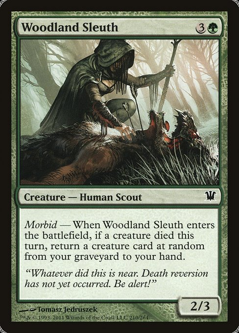 Woodland Sleuth [Innistrad] | Lvl Up Gaming UK