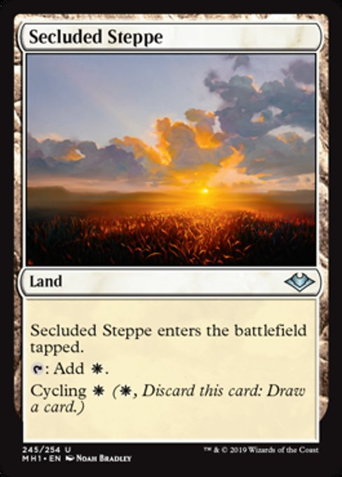 Secluded Steppe [Modern Horizons] | Lvl Up Gaming UK