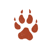 Red Wolf Paw
