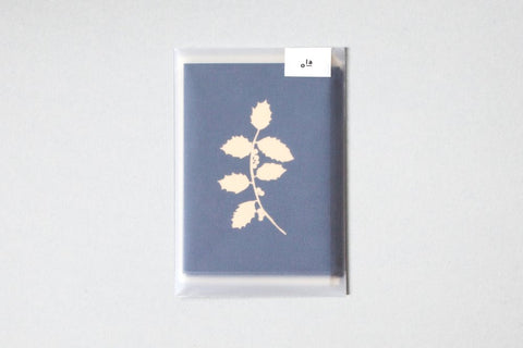 Pack of 6 Holly Cards in Brass Foil with Envelopes in Navy by ola
