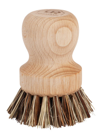 Pot brush in beech wood