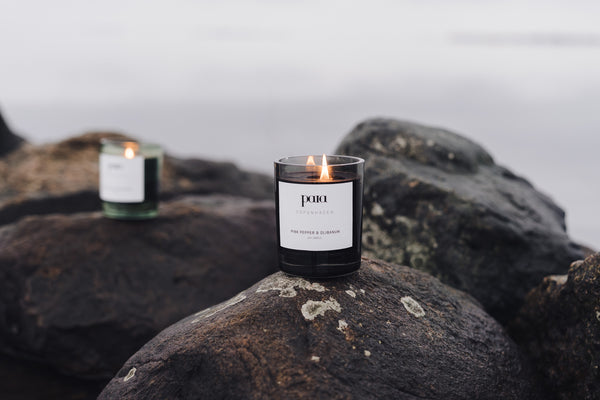 Grapefruit & Bergamot luxury candle 220g (Small) by Paia Copenhagen