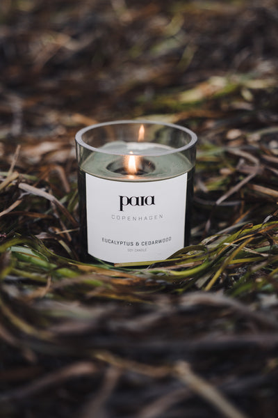 Amber and Wild Orchid luxury candle by Paia Copenhagen