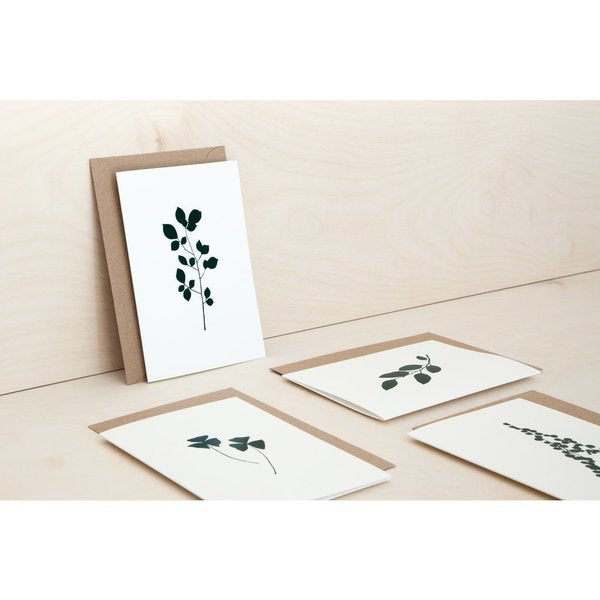 Cherry Print Card in Ivory/Green Card in Ivory/Green by Ola