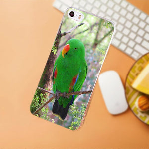 Maerknon Animal Parrot For iPhone 4 4S 5 5C SE 6 6S 7 8 Plus X HTC Desire 628 630 816 820 One A9 M7 M8 M9 M10 TPU Art Cover Case